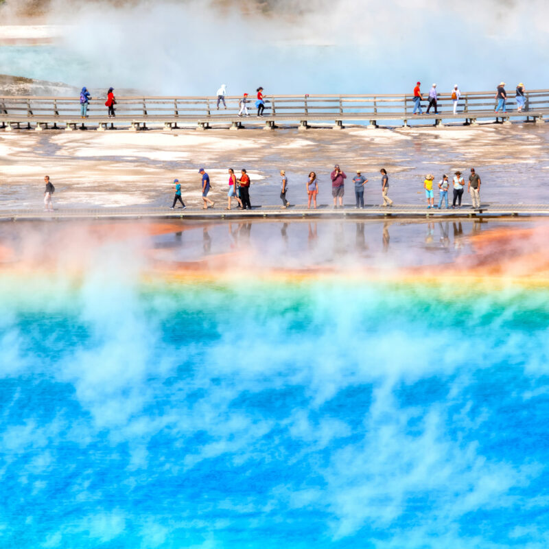 Crowds at Yellowstone National Park.