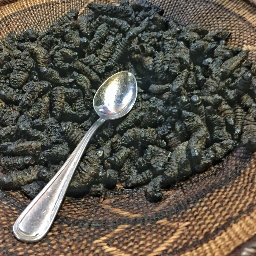 Crunchy mopane worms in a woven basket with a silver spoon