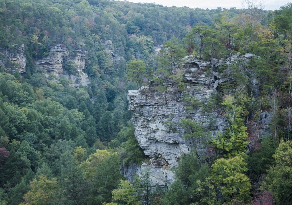Cumberland Plateau in Tennessee.