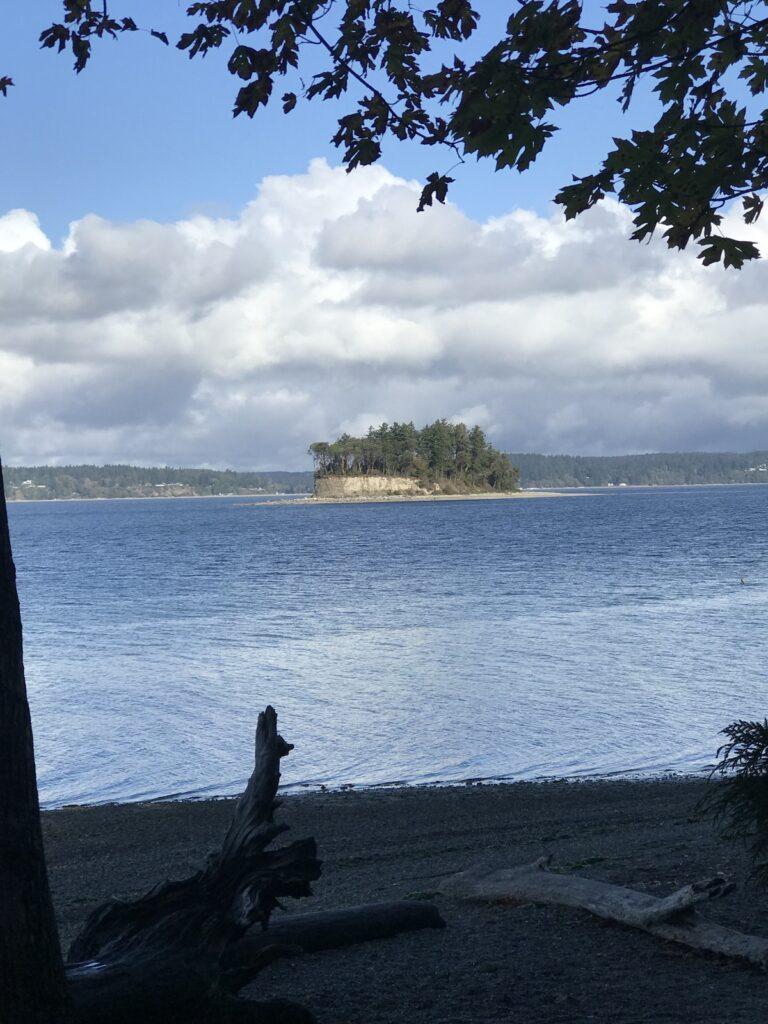 Cutt Island at Kopachuck State Park.