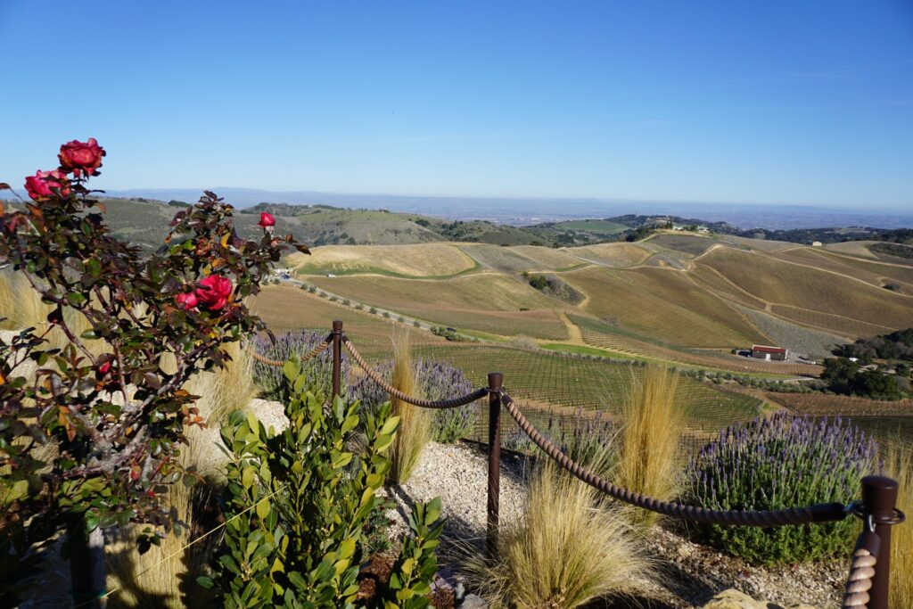 DAOU Vineyards and Winery in Paso Robles.