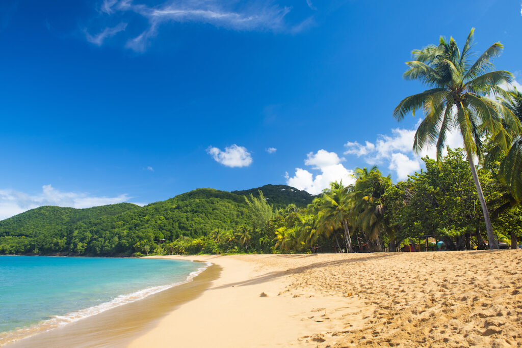 De Grande Anse, a famous beach on a Guadeloupe island.
