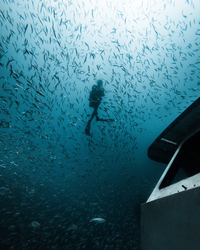 Deep diving in Panama City Beach, Florida.