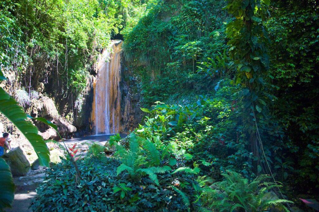 Diamond Falls Botanical Gardens in Saint Lucia.