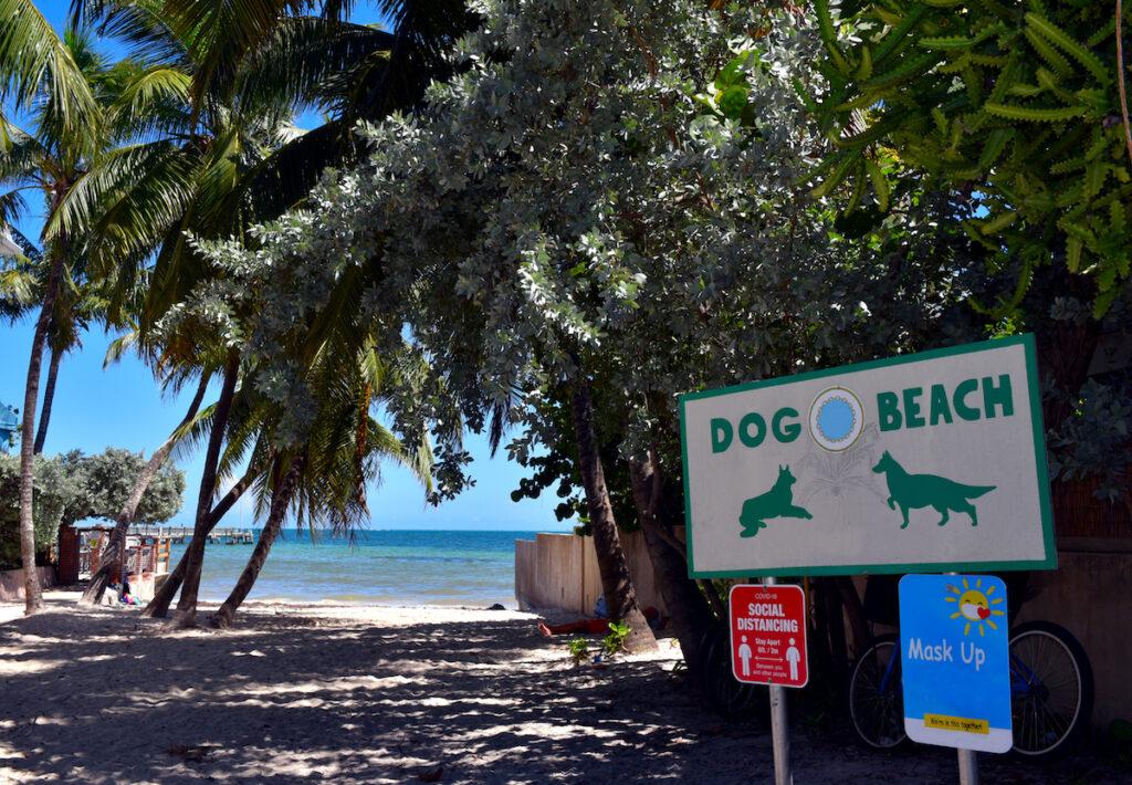 Dog Beach in Key West, Florida.