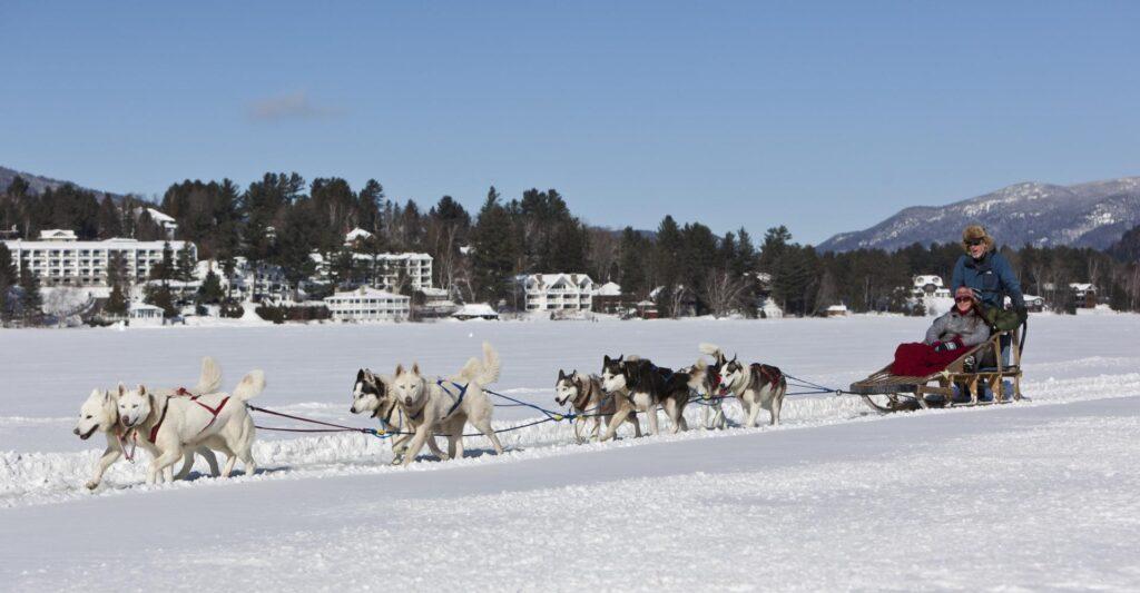 Dog sled rides at Lake Placid.