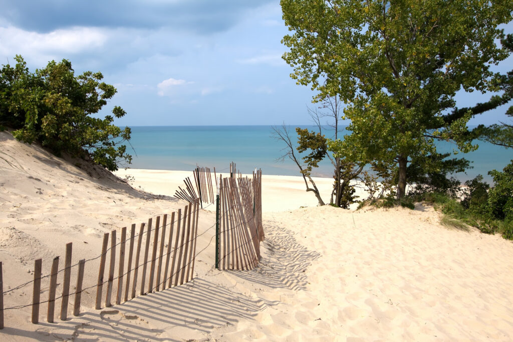 Dunes along the lakeshore in Indiana Dunes National Park.