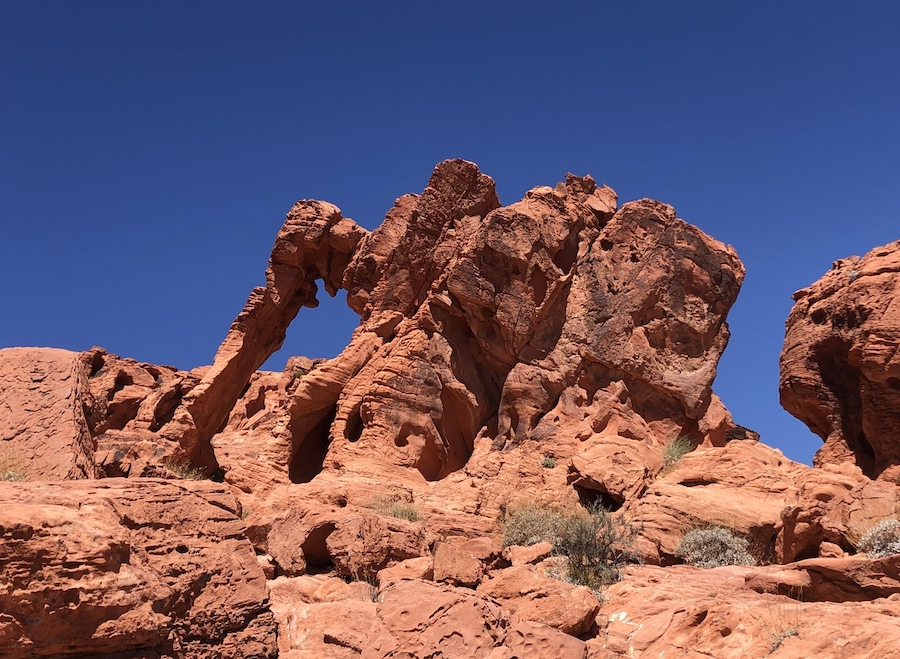 Elephant Rock in Valley of Fire State Park.