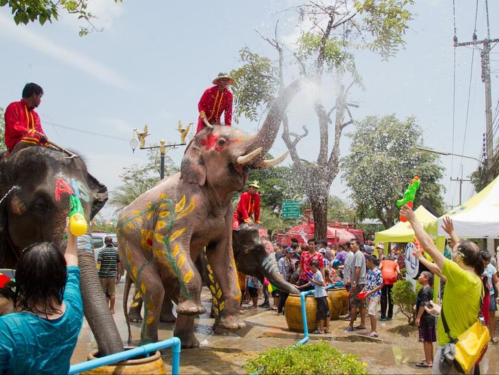 Elephant sprays water on crowd, Songkran festival. Thailand.