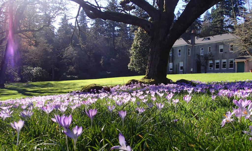 Elk Rock Garden in Portland, Oregon.
