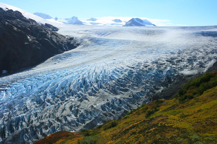 Exit Glacier in Kenai Fjords National Park.