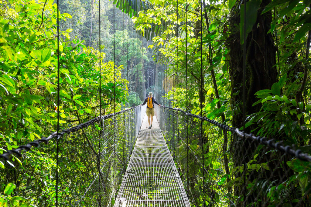 Exploring the rainforests of Costa RIca.