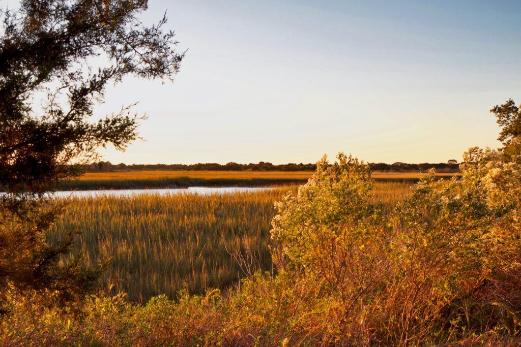 Fall at Kiawah Island in South Carolina.