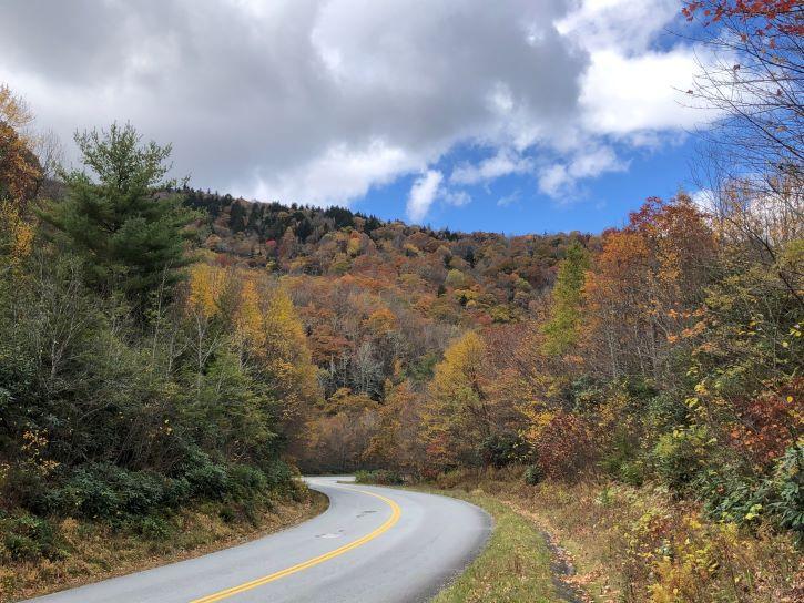 Fall foliage along the Blue Ridge Parkway in North Carolina.
