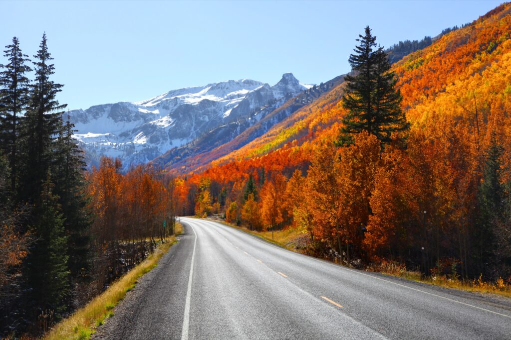 Fall foliage along the Million Dollar Highway.
