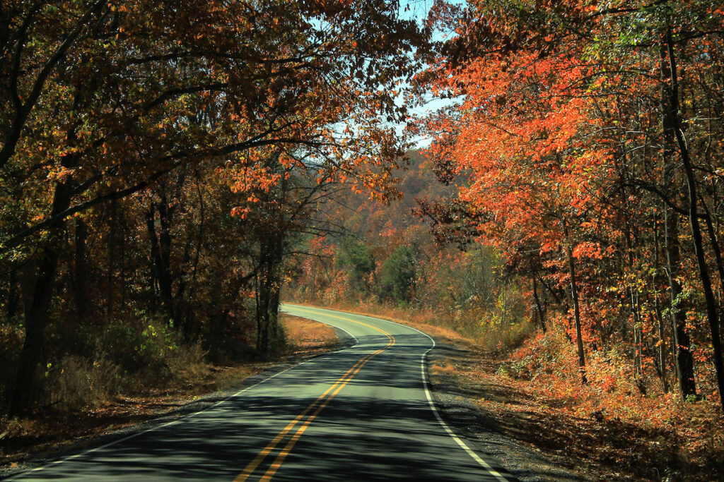 Fall foliage along the Skyway Motorway in Alabama.