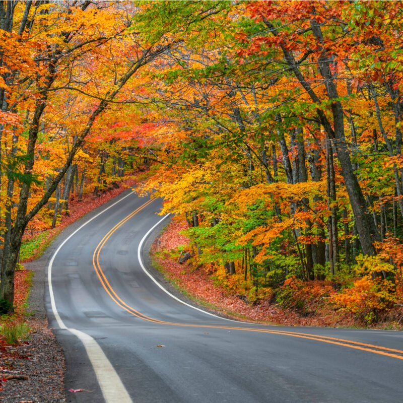 Fall foliage along the Tunnel Of Trees in Michigan.