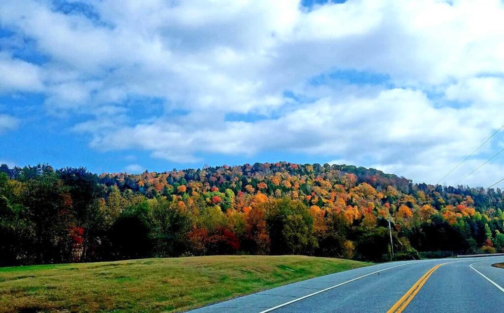 Fall foliage along Vermont 100.