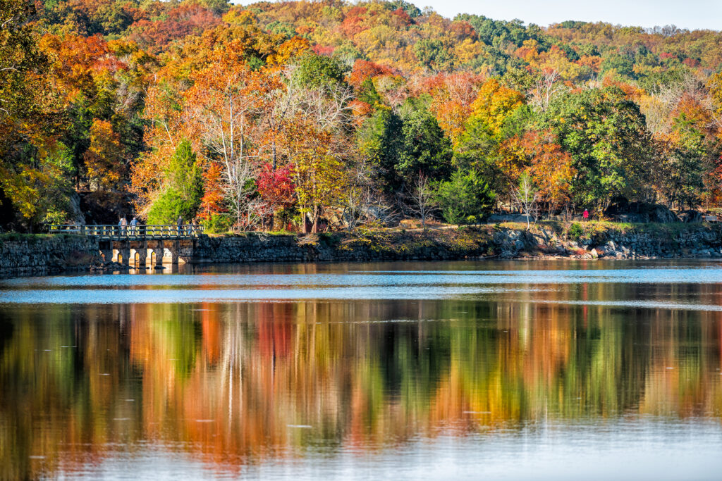 Fall foliage and Potomac River views along the Billy Goat Trail.