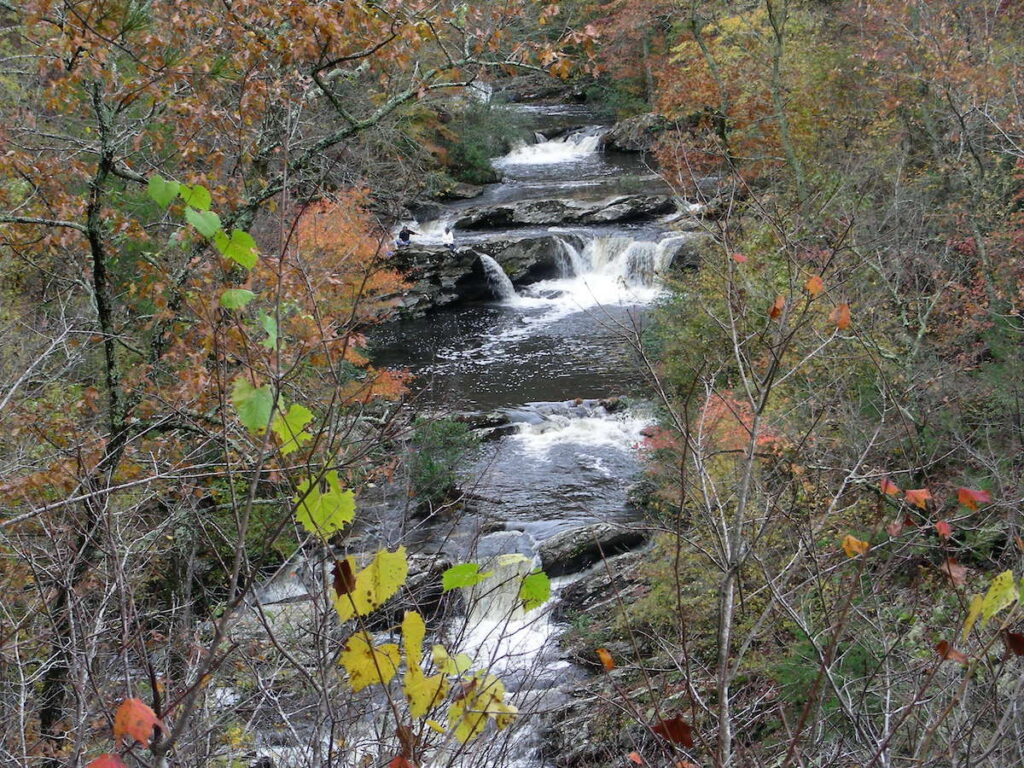 Fall foliage at Cheaha State Park in Aalabama.