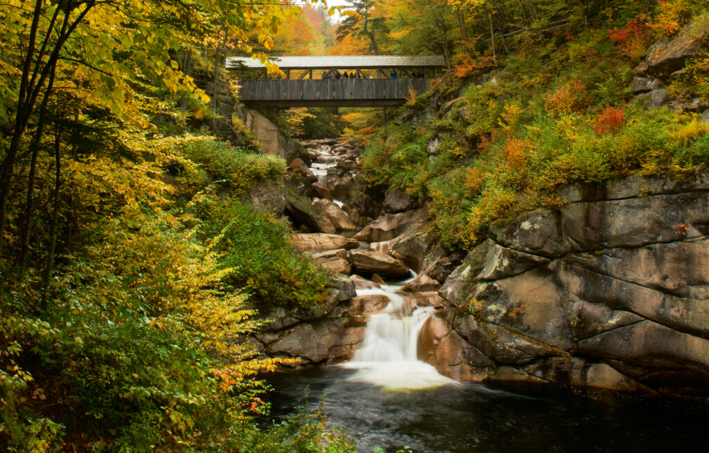 Fall foliage at Flume Gorge in New Hampshire.