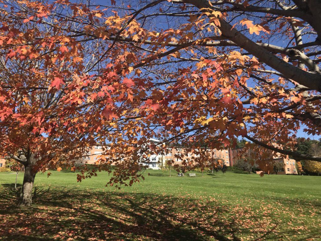 Fall foliage at Kripalu.