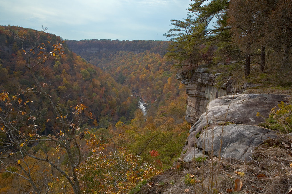 Fall foliage at Little River Canyon in Arkansas.