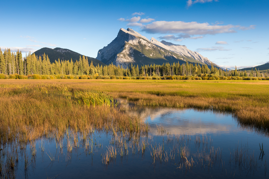 Fall foliage at Vermillion Lakes in Canada.