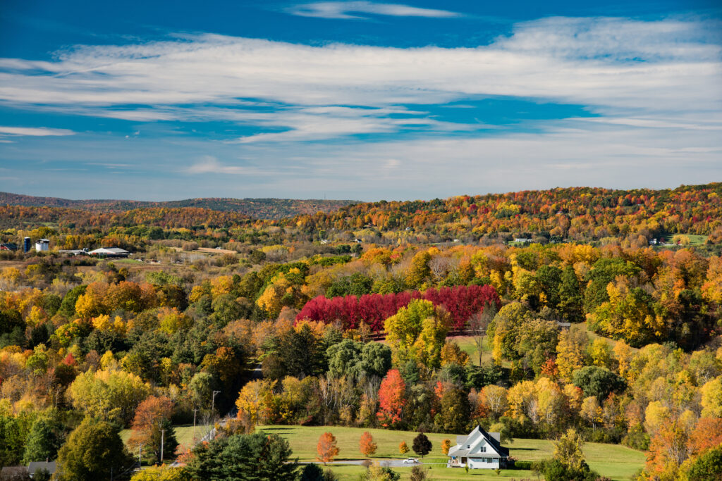 Fall foliage in Bennington, Vermont.