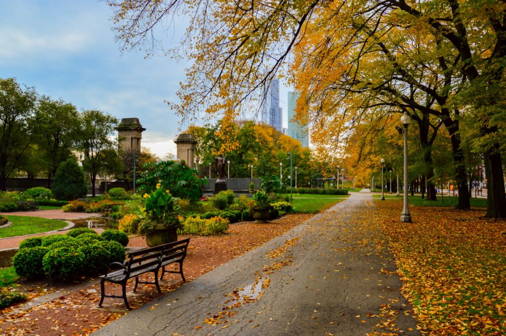 Fall foliage in Grant Park, Chicago.