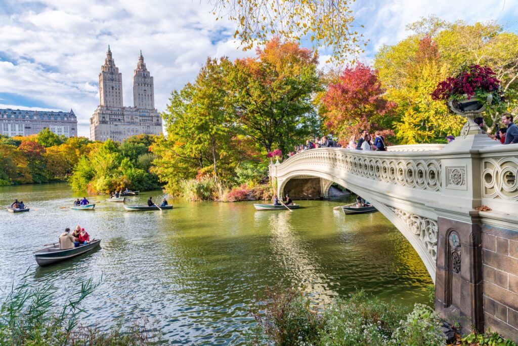 Fall foliage in New York City's Central Park.