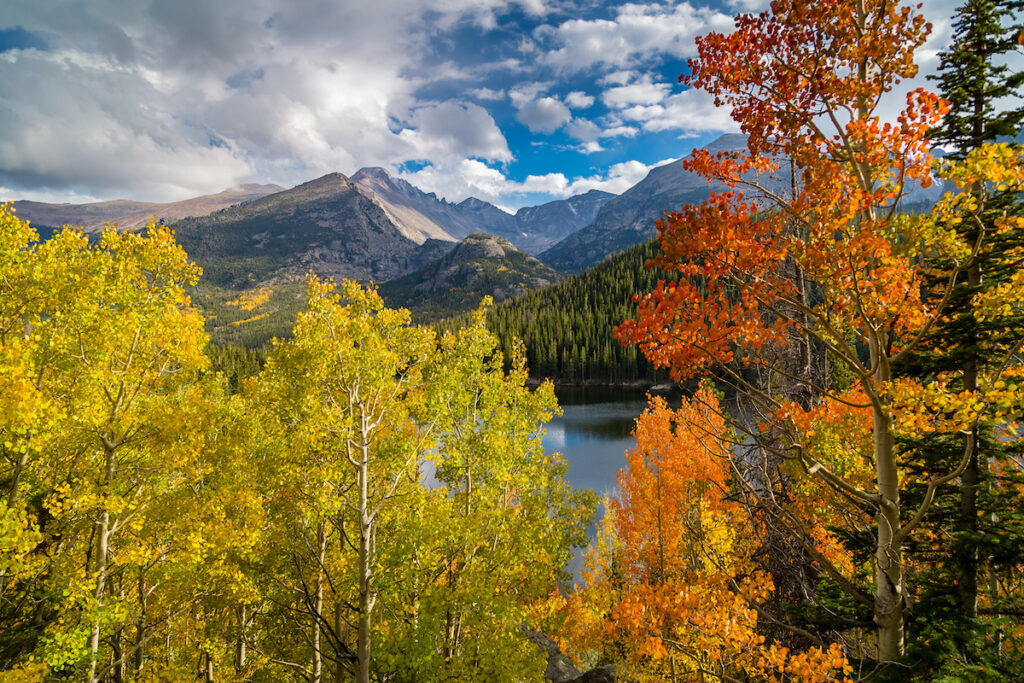 Fall foliage in Rocky Mountain National Park.