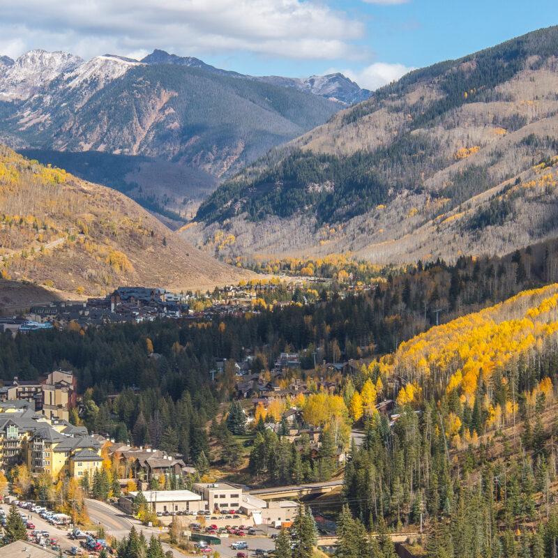 Fall foliage in Vail, Colorado.