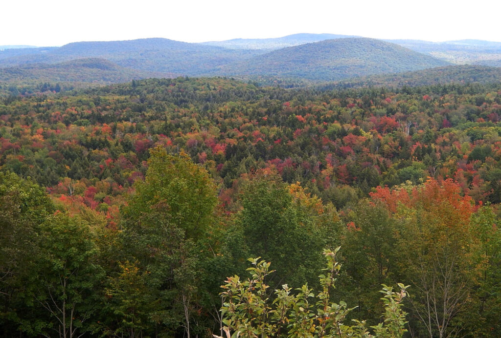 Fall foliage in Vermont's Green Mountains.