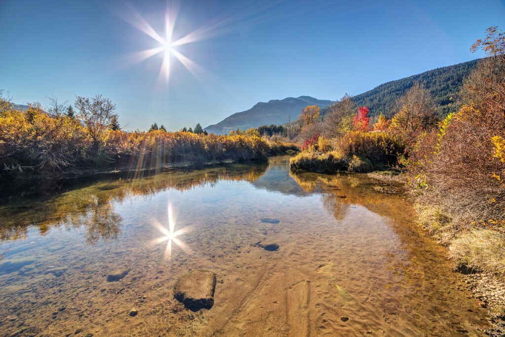 Fall foliage in Whistler, British Columbia.