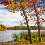Fall foliage in Wisconsin.