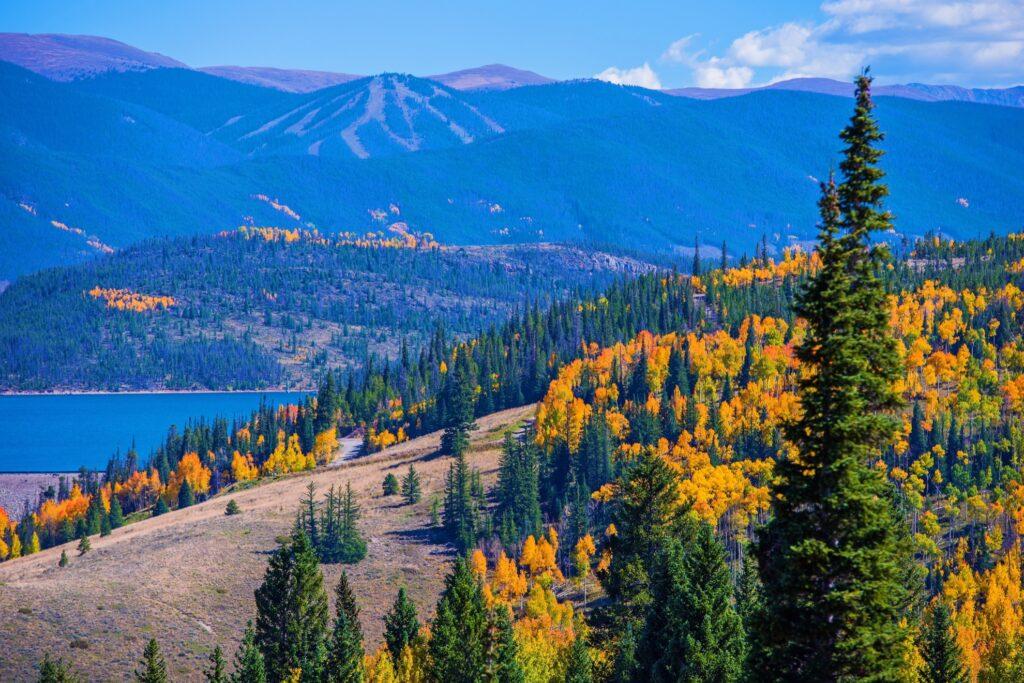 Fall in Colorado.