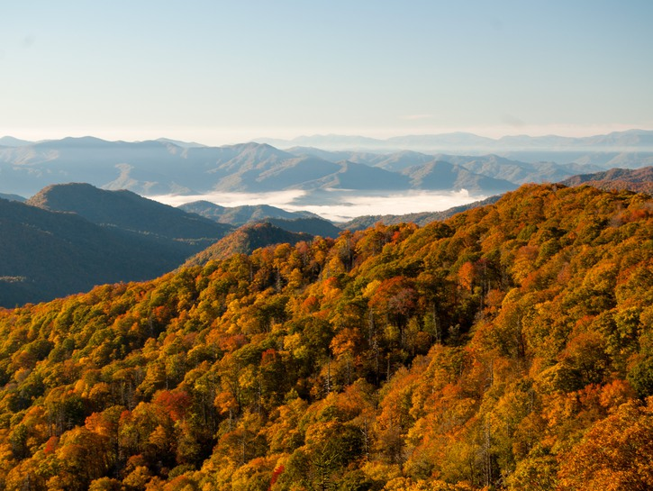 Fall in the Great Smoky Mountains