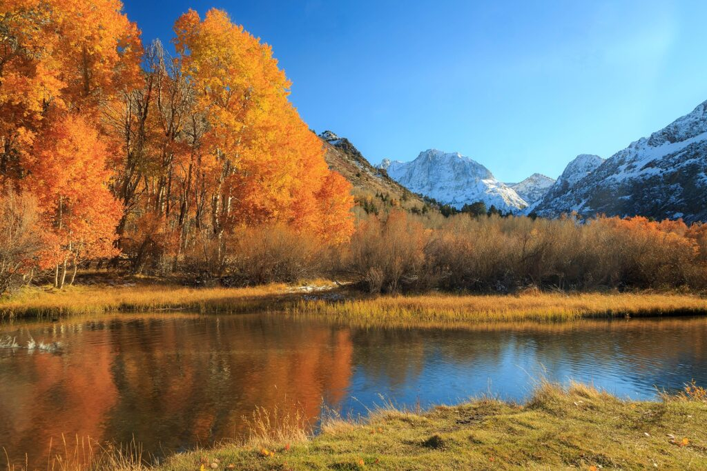 Fall in the Sierra Mountains of California.