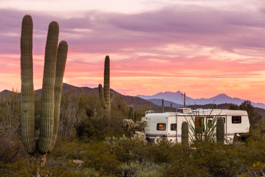 Fifth Wheel RV parked on campsite in Sonoran Desert beside Saguaro Cacti