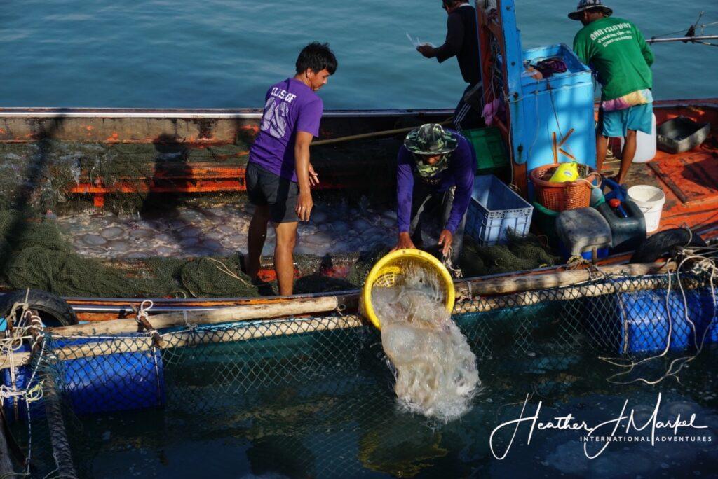 Fishermen working at the Ao Noi Fishing Village.