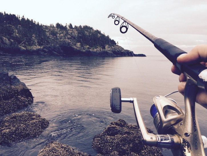 Fishing rod cast into water
