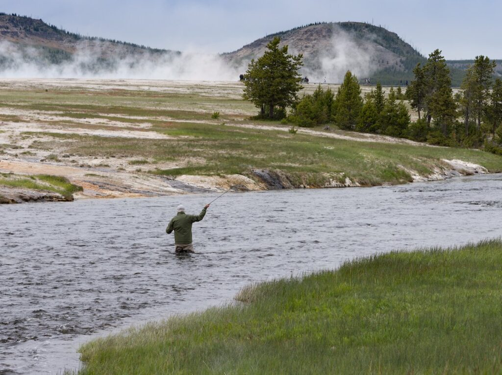 Fly fishing in Yellowstone National Park.
