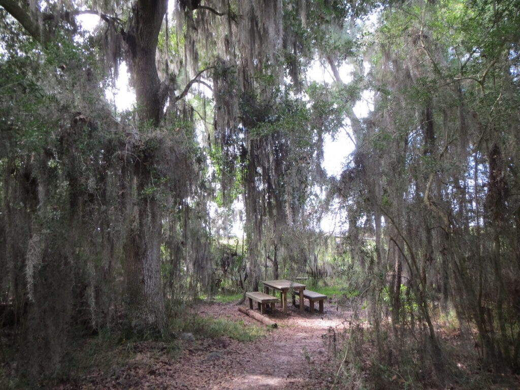 Fontainebleau Trail in Mandeville, Louisiana.