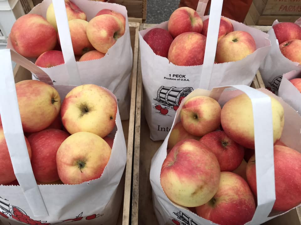 Fresh apples for sale at the Charlevoix Farmers Market.