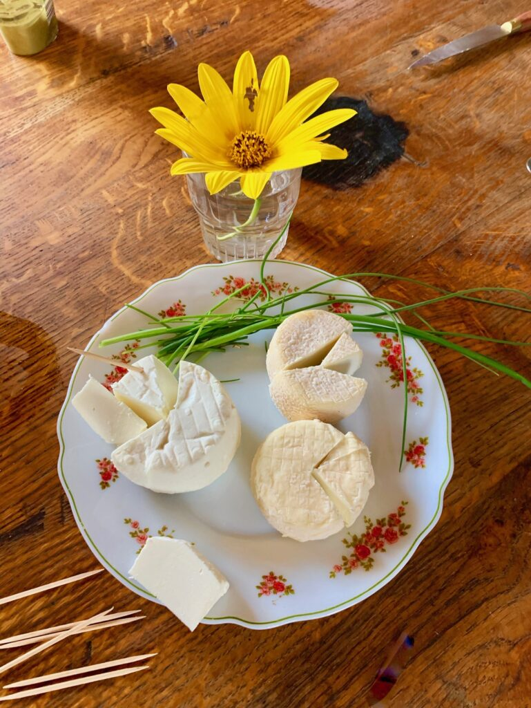 Fresh goat cheese from France.