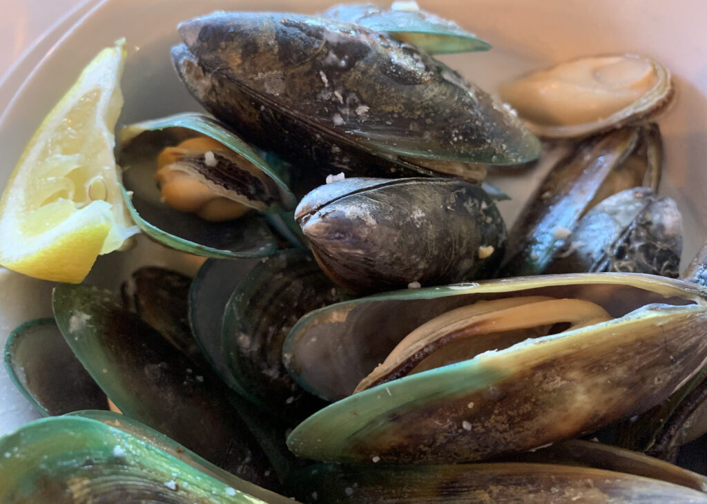 Fresh mussels from New Zealand.