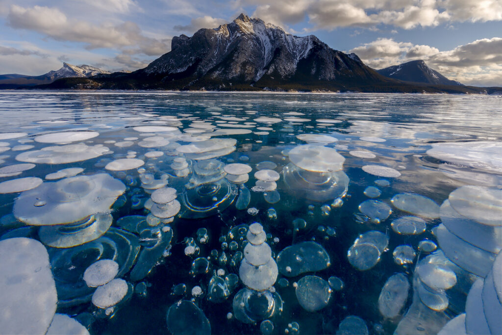 Frozen bubbles at Abraham Lake in Banff National Park.