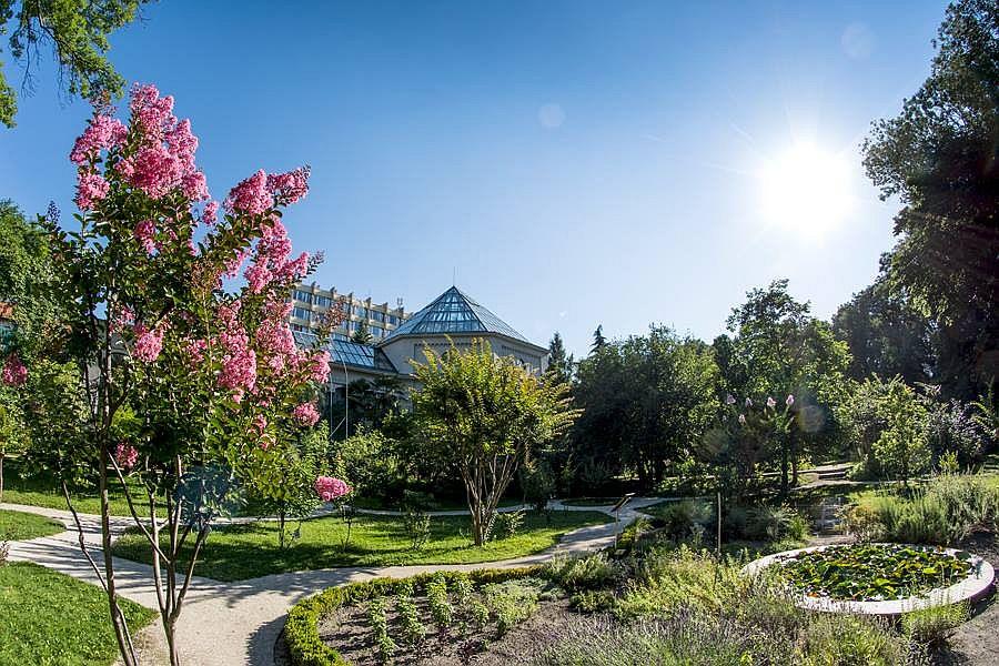 fuveszkert botanical garden