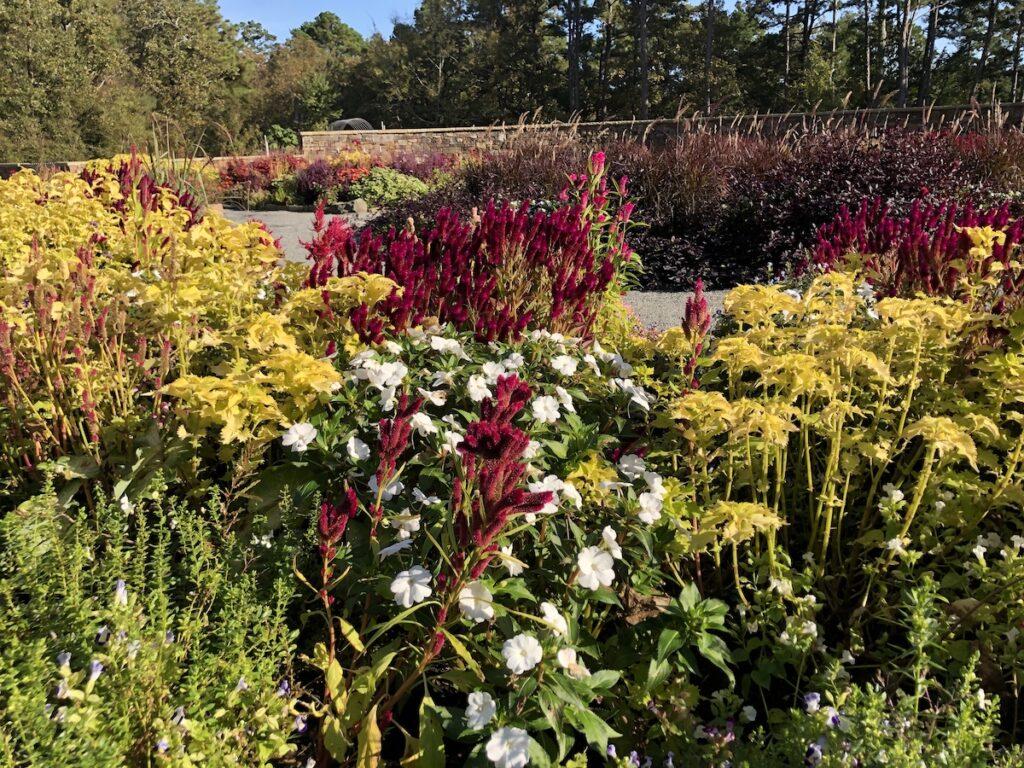 Garvan Woodland Gardens.